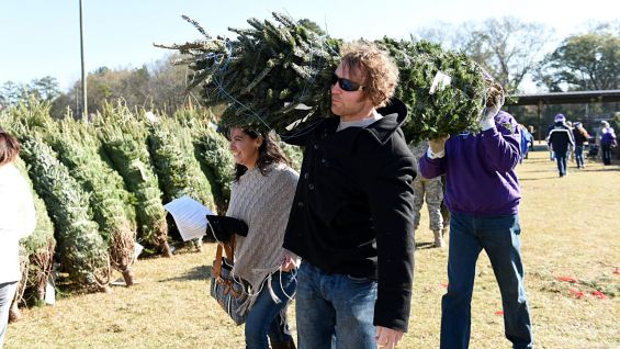 WWE Superstars and Divas participate in Trees for Troops