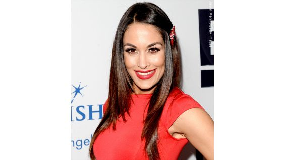 Nikki and brie bella at 2013 wishing well winter gala photos wwe