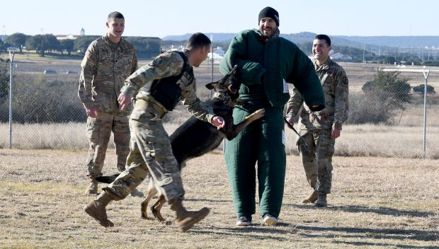 WWE Superstars participate in a K-9 demonstration at Fort Hood, Texas: photos