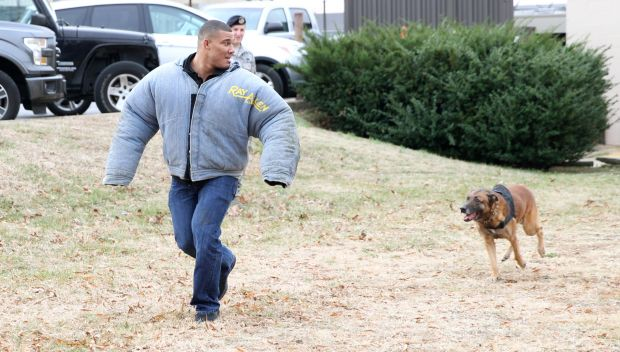 WWE Superstars participate in a K-9 demonstration: photos