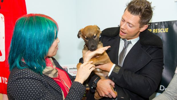 The Miz & Asuka journey to Rescue Dogs Rock: photos