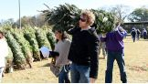 Dean Ambrose helps load a tree for a soldier's family.